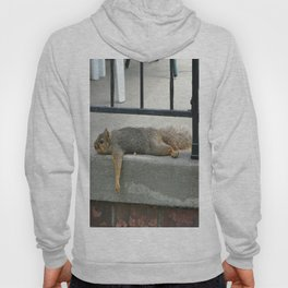 Squirl on a Hot Summers Day. Hoody