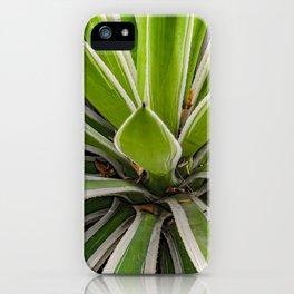 Tropical Plant Detail, Botanic Garden, Guayaquil iPhone Case