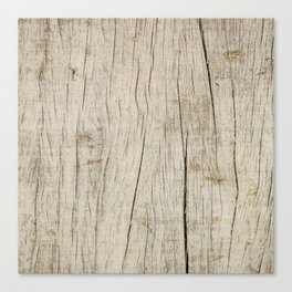 Vintage wood texture Canvas Print