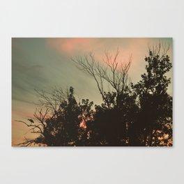 Sunset Perch Canvas Print
