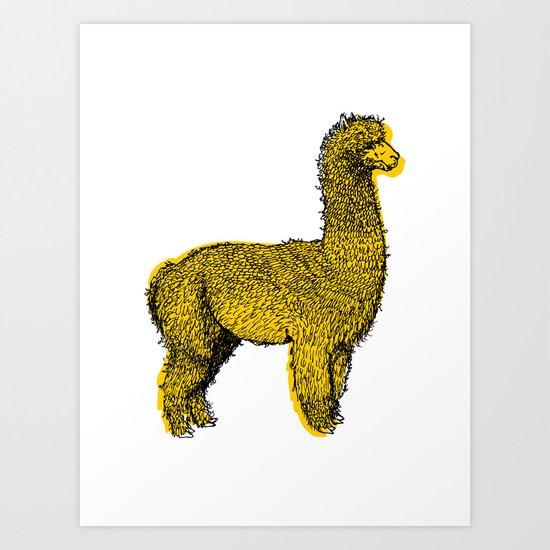 huacaya alpaca Art Print