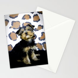Yorkshire Terrier Puppy Looking up Sitting in front of Brown Leopard Print Background Stationery Cards