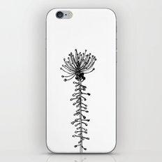 Comosa iPhone & iPod Skin