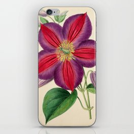 Smith, Worthington G. (1835-1917) - The Floral Magazine 1869 - Clematis Magnifica iPhone Skin