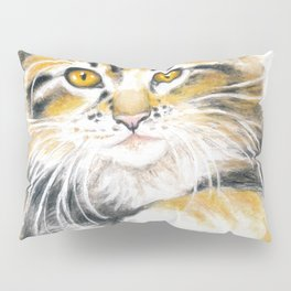 Maine Coon Kitty Pillow Sham