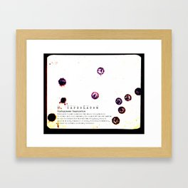 ABSTRACT SCIENCE ART - Vintage Disease Culture from 1976 Framed Art Print