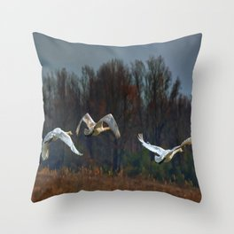 Three Snow Geese Throw Pillow