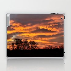 Midwest Morning Laptop & iPad Skin