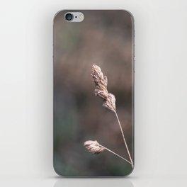 Blade of Grass iPhone Skin