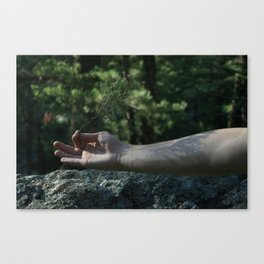 Veins like the Tendrils of Trees  Canvas Print