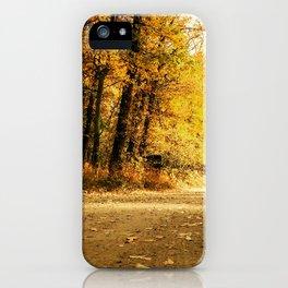 Golden Path iPhone Case