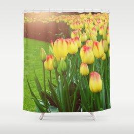 Yellow Red Tulips Shower Curtain