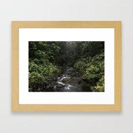 Road to Hana 01, Nahiku, Maui, Hawaii Framed Art Print