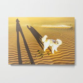 Shadows of a dog and his master on the sand in winter just after dawn Metal Print