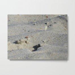 Sandy Shores Metal Print