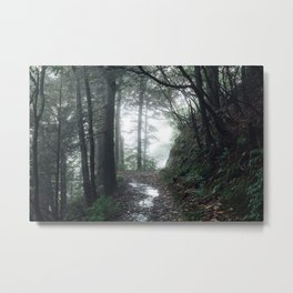Appalachian Trail Metal Print