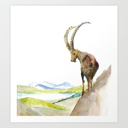 Ibex follow me I dare you Art Print
