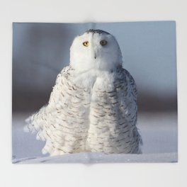 Saint Snowy Throw Blanket