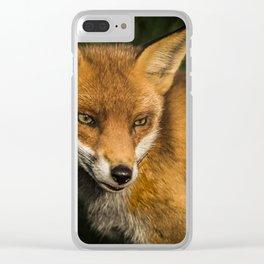 Fantastic Mr Fox Clear iPhone Case