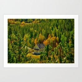 The House Art Print
