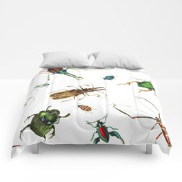 Bug Life - Beetles - Bugs - Insects - Colorful - Insect Pattern Comforters