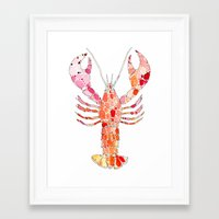 lobster Framed Art Prints featuring Lobster by fossilized