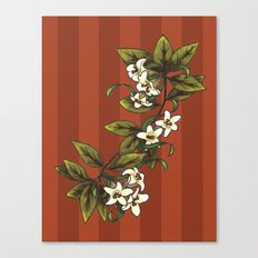 Vintage Flower (1) Canvas Print