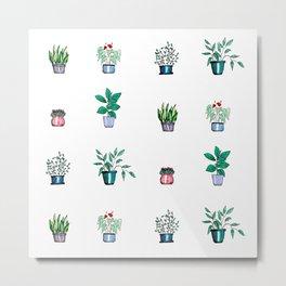 Collection of houseplants Metal Print