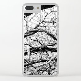 Mangled Tangled Woods. Diamond Head Crater B&W Clear iPhone Case