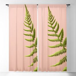 Fern Study On Pink #2 Blackout Curtain