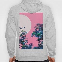Pink sky and rowan tree Hoody