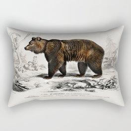 Vintage Old Brown Bear Book Illustration Rectangular Pillow
