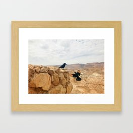 Meeting In Judean Desert Framed Art Print