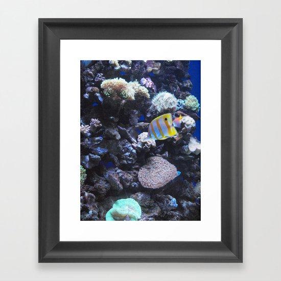 See Life Framed Art Print