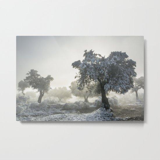 Magic morning II. Sun through the fog. Metal Print