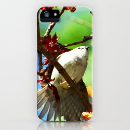 Colors of Spring Bird iPhone Case