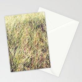 Tillinghast Place 05 Stationery Cards