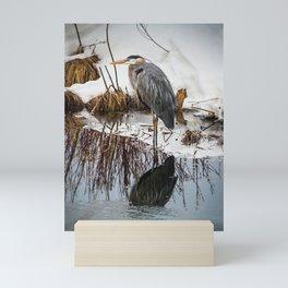 Heron pose along the bank Mini Art Print