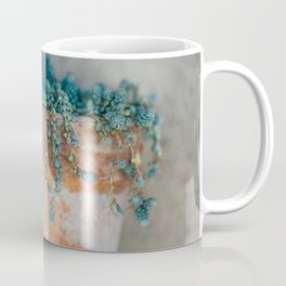 Succulent Love Coffee Mug
