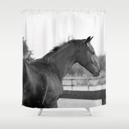 Bubba in Black and White Shower Curtain