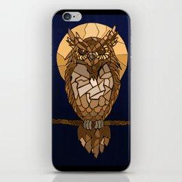 Mosaic Owl iPhone Skin