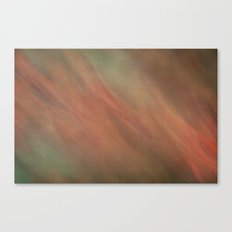 nature spirits 5 Canvas Print