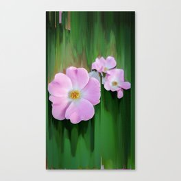 Pink Wild Roses Canvas Print