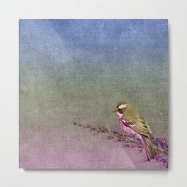 Beautiful bird sitting on brach with purple flowers Metal Print