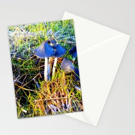 inkcap toadstools Stationery Cards