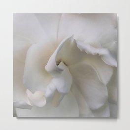 Gardenia 2 Metal Print