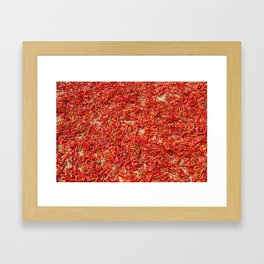 Chillies and Peppers Framed Art Print