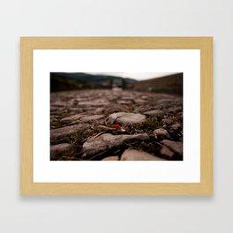 THE SMALL RED FLOWER Framed Art Print