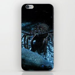 Lobster and the Eels iPhone Skin