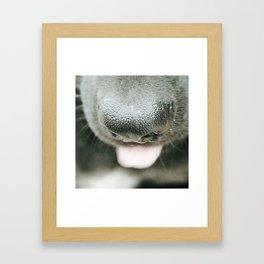 Rascally Framed Art Print